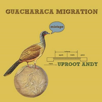 guacharaca