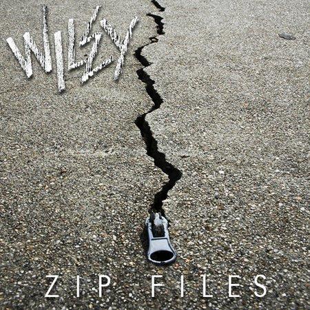 wileyzipfiles