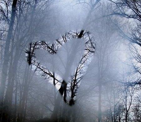 heartfog