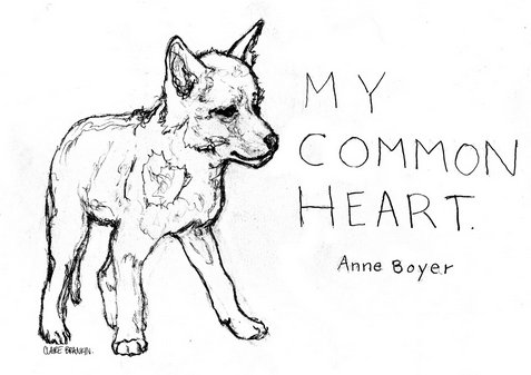 annecayote 2
